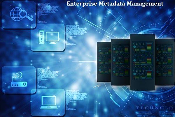 Enterprise Metadata Management Market